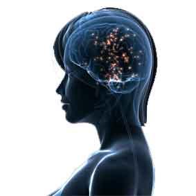 vrouw hersenen uitsnede blauw