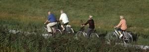 fietsen1-300x106
